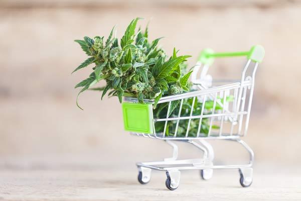 Marijuana payment processing options.